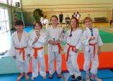 Judo , encore des rencontres et des podiums