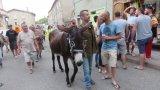 La course aux ânes en images