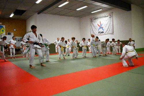 Reprise du Judo